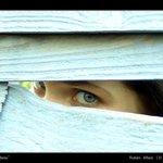 Mojito profile picture