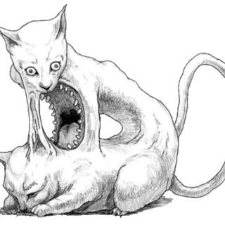 HP_Lovecat profile picture