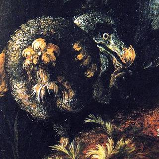 English Dodo profile picture