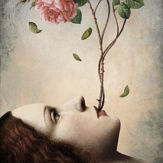 Moviolala profilbillede