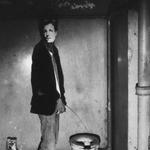 Ripley profile picture