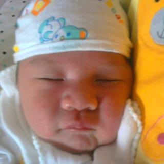 Nguyen Thai Vi profile picture