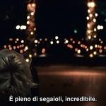 francescaborrelli profile picture
