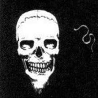 NotDakotaFanning profile picture