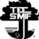 Tee Smif profile picture