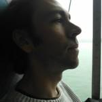 Seagull Moustache profile picture