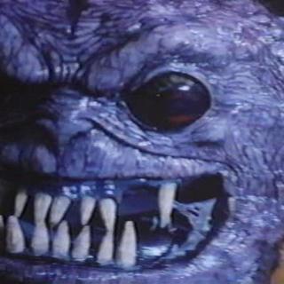 Bambola profile picture