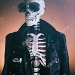 CJ Roy profile picture