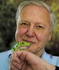 Photo of David Attenborough