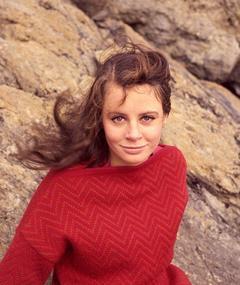 Photo of Sarah Miles
