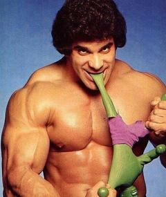Photo of Lou Ferrigno