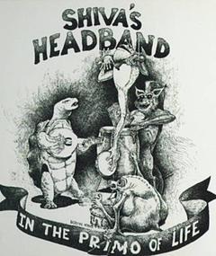 Foto Shiva's Head Band
