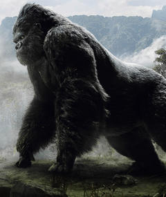 Photo of King Kong