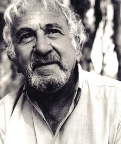 Photo of John Bluthal