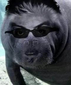 Photo of Brett Keane
