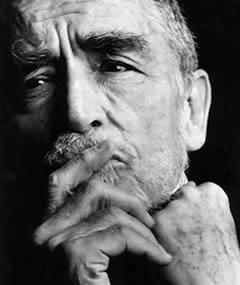 Photo of Vittorio Gassman