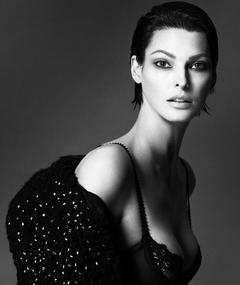 Photo of Linda Evangelista