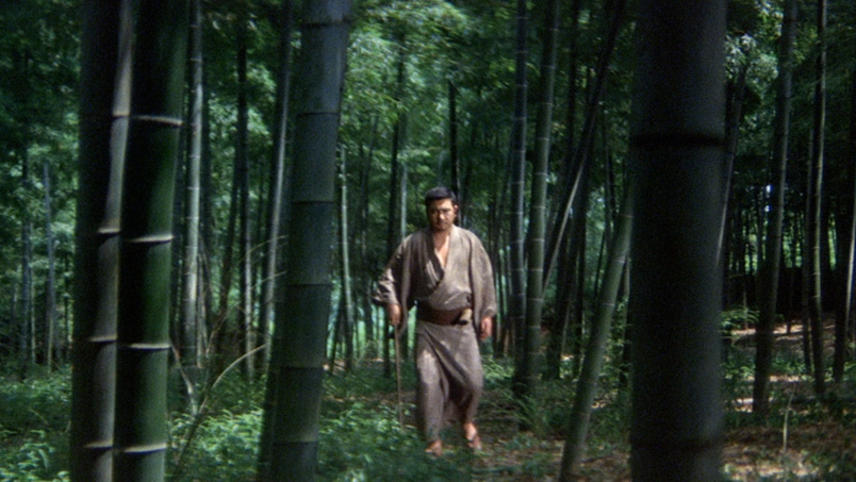 Zatoichi 18: Zatoichi and the Fugitives