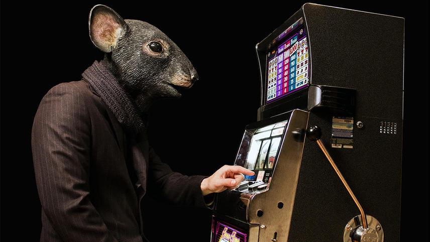 Lapse: Confessions of a Slot Machine Junkie