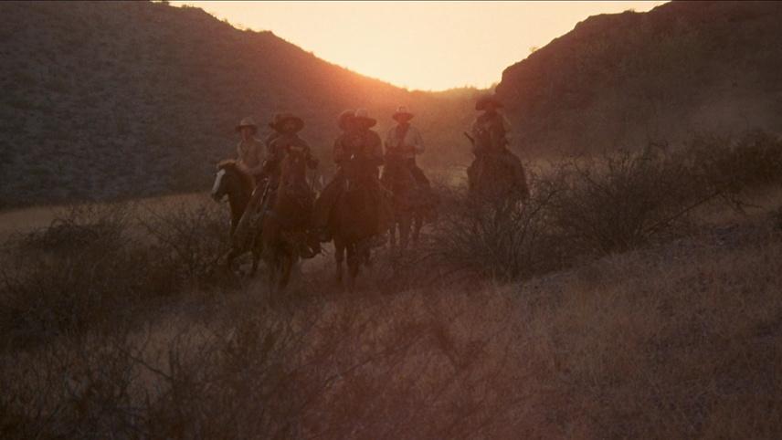 The Culpepper Cattle Co.
