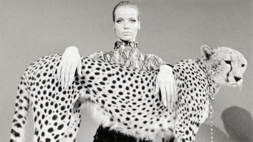 Veruschka: A Life for the Camera