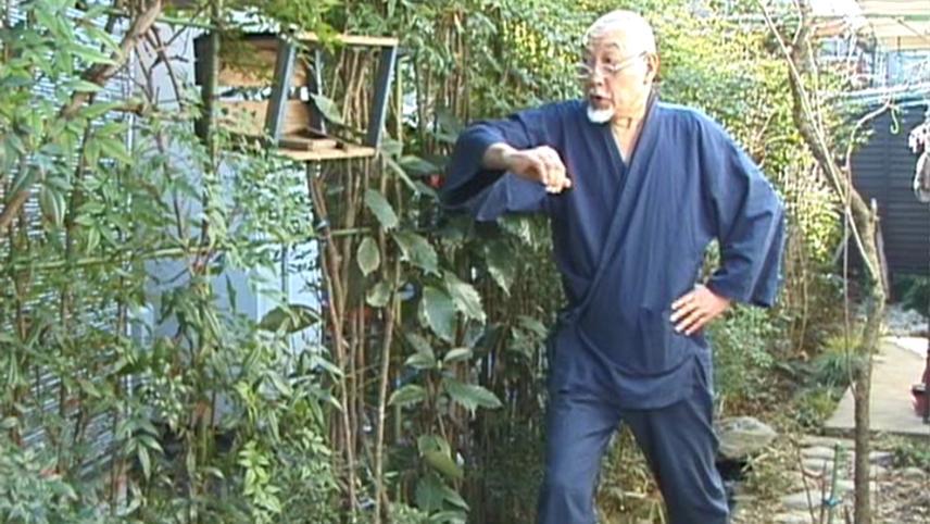 Super Documentary: The Avant-Garde Senjutsu
