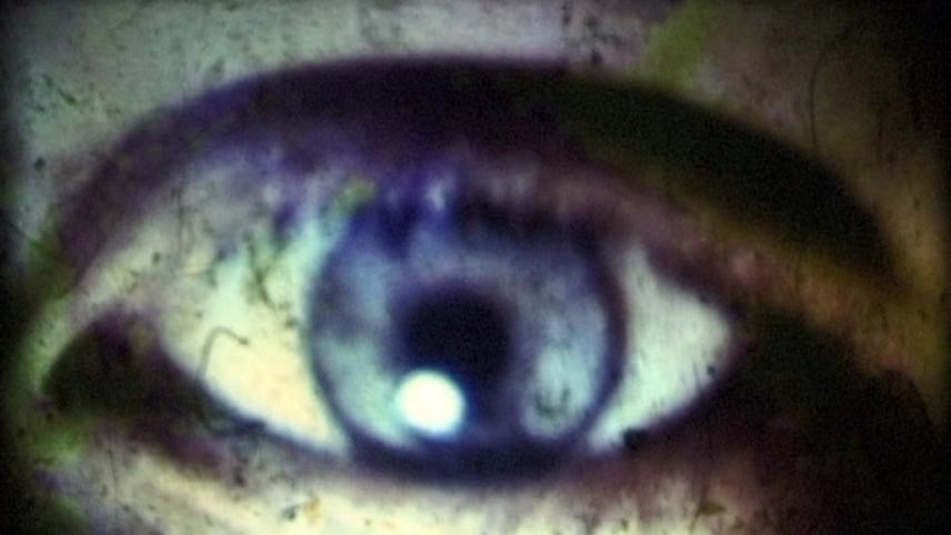 Wild Eye