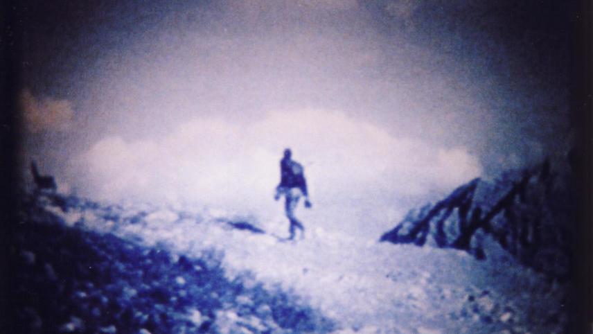 Alpine Forays