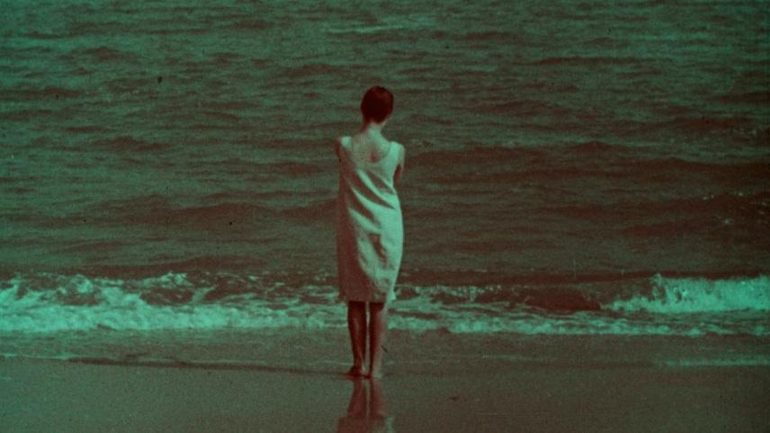 Entering the Sea