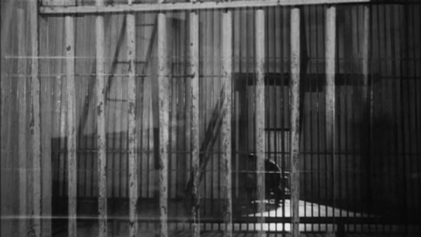 Lo specchio a forma di gabbia
