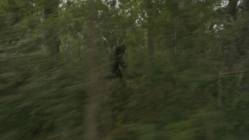 Exists - Die Bigfoot-Legende lebt!
