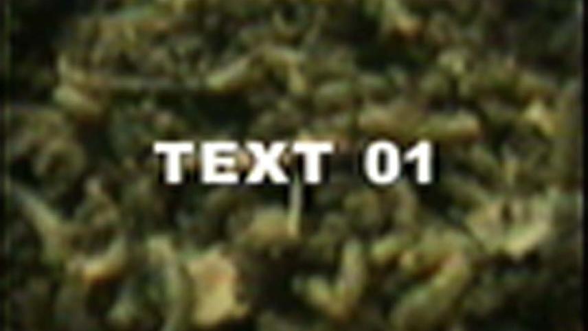 Textism
