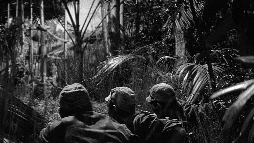Kaptajnen i junglehelvedet