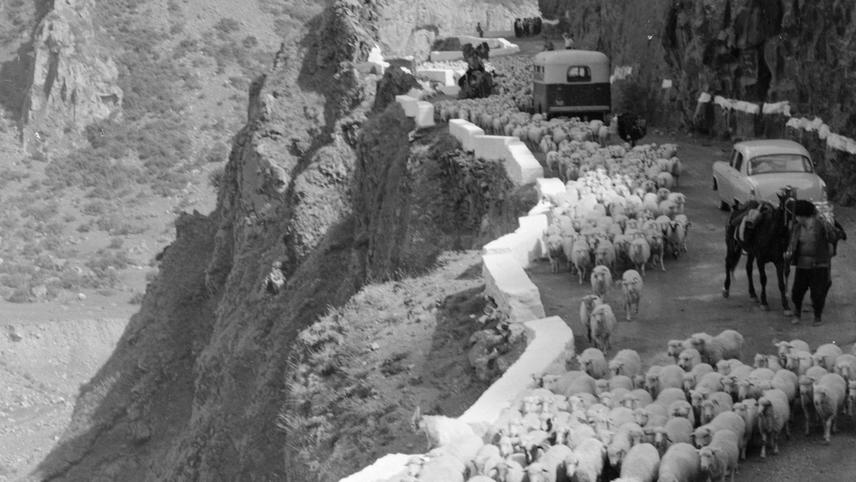 The White Caravan
