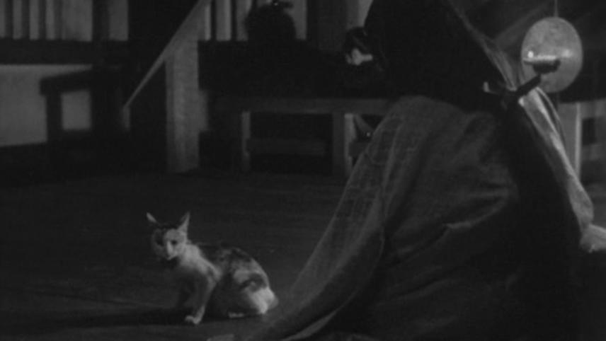 The Terrible Ghost Cat of Okazaki
