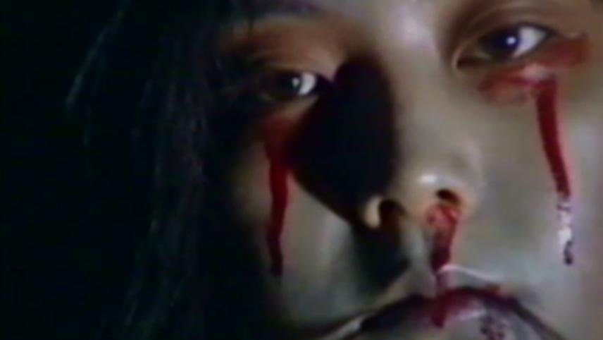 Daikanyama Wonderland Horror