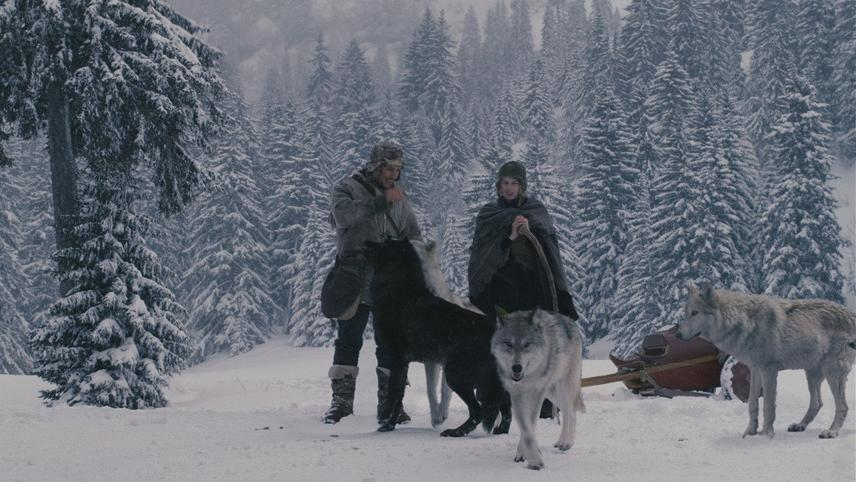 The Maiden and the Wolves
