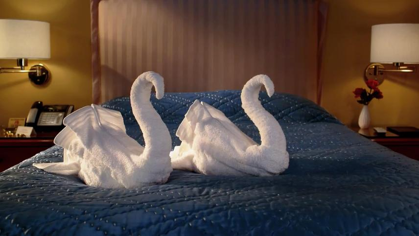 CitizenM: Swan Song