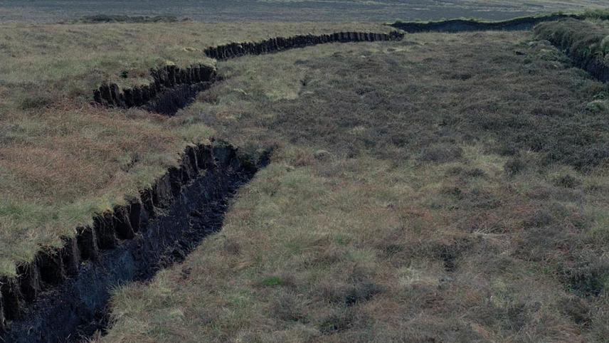 Ancient Ground