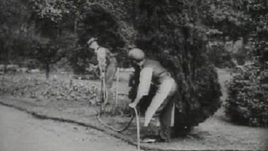 A Joke on the Gardener