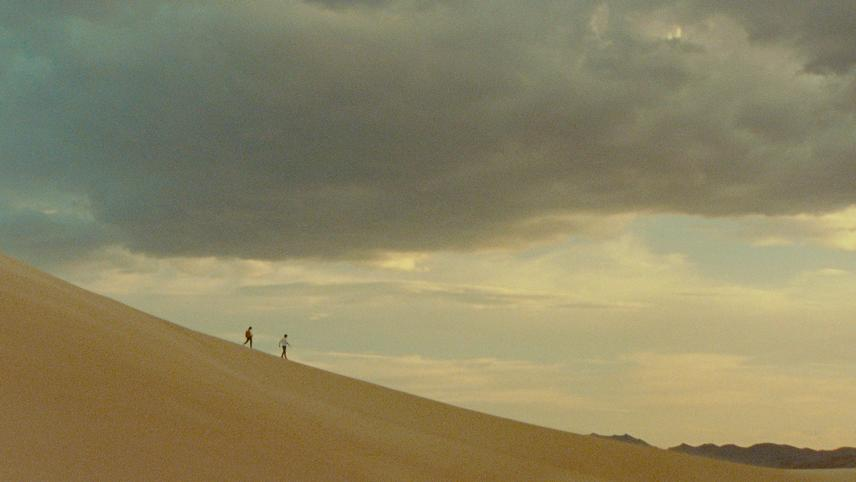 Desert Cry