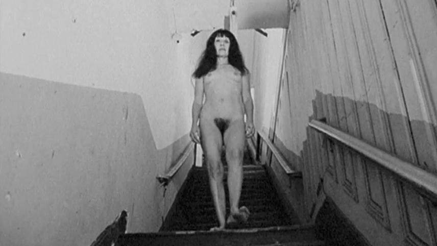 Nude Descending the Stairs