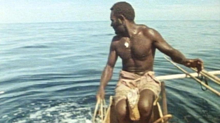 The Sharkcallers Of Kontu