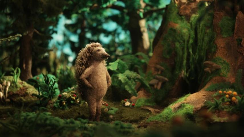 Hedgehog's Home