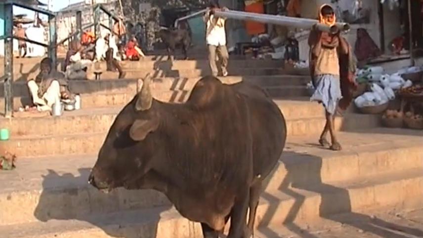 La sindrome di Varanasi