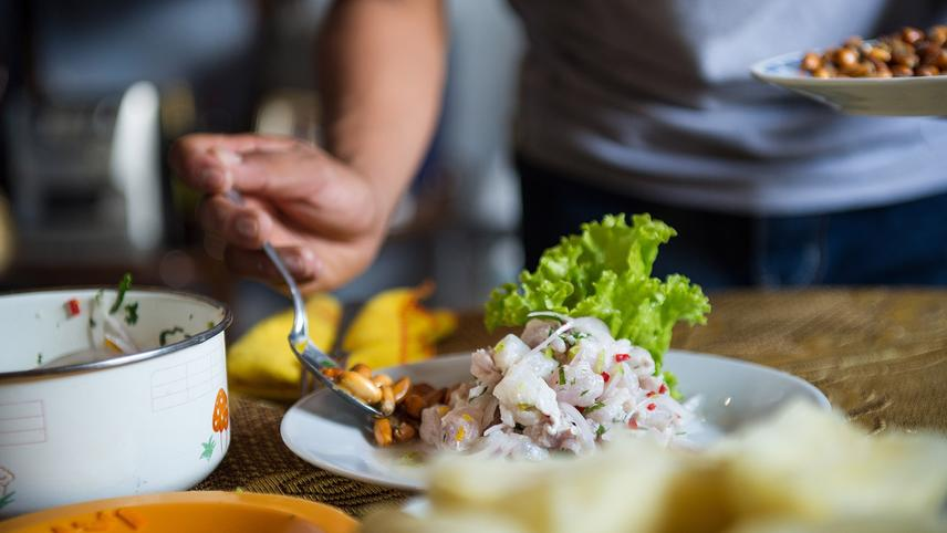 The Ceviche DNA