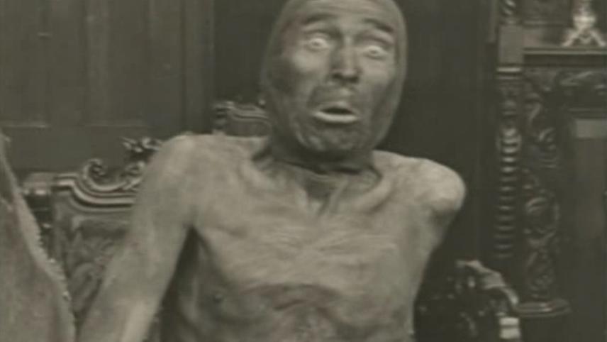 The Egyptian Mummy