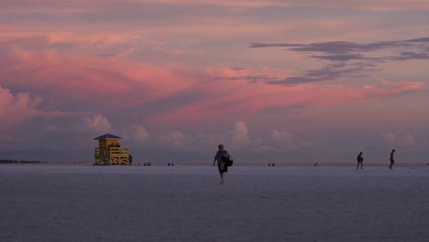 Sarasota Half in Dream