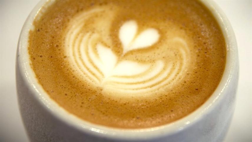 Cafe-Nation