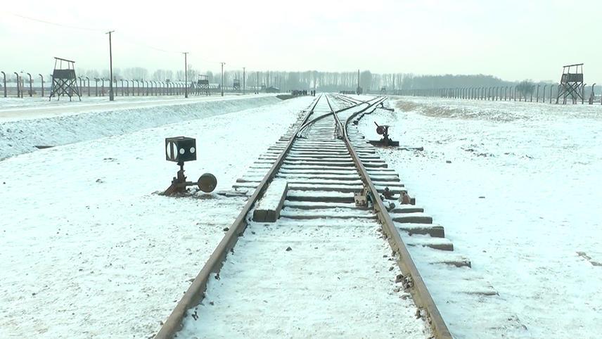 19 876 Steps in Auschwitz / Birkenau